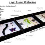 Insectos LEGO