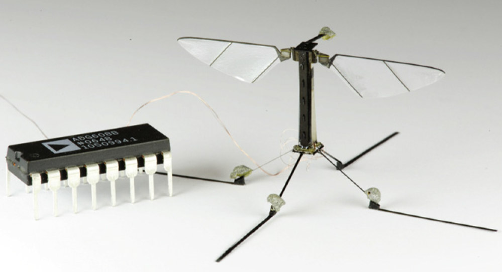 Adaptive control of a millimeter-scale flapping-wing robot