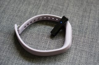 fitbitcharge2flex2_4-980x644[1]
